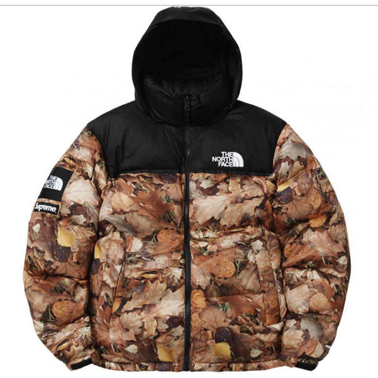 Supreme North Face Nuptse Leaves Jacket